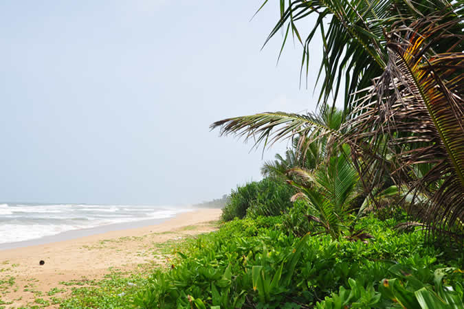 Visite Sri Lanka plages