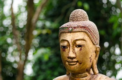 Le jardin secret de Bouddha